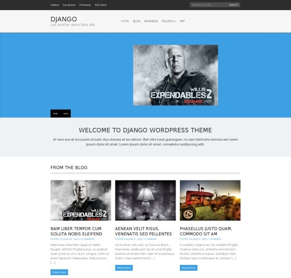 django-free-portfolio-wordpress-theme