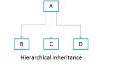 Hierarchical diagram Hierarchical Inheritance in java with example program