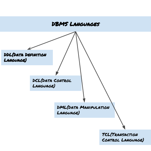 DBMS language