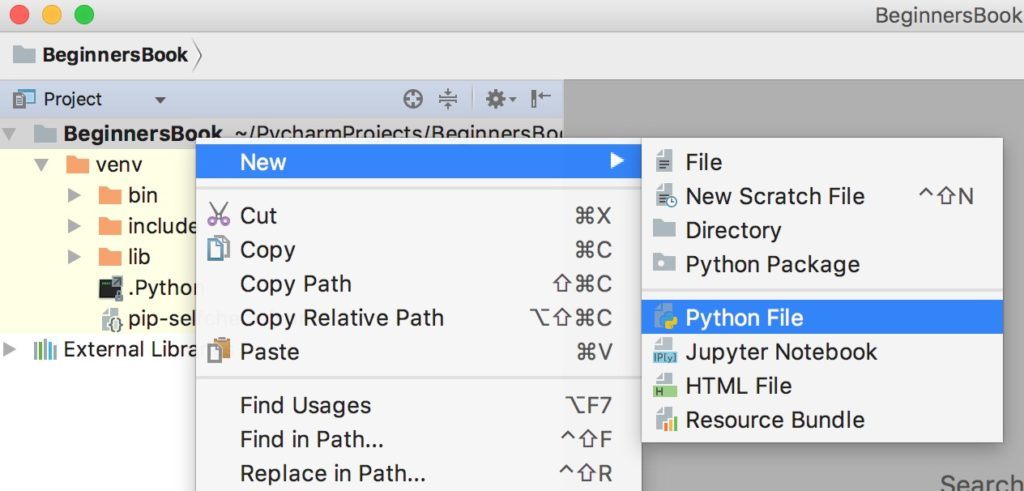First Python Project in PyCharm IDE